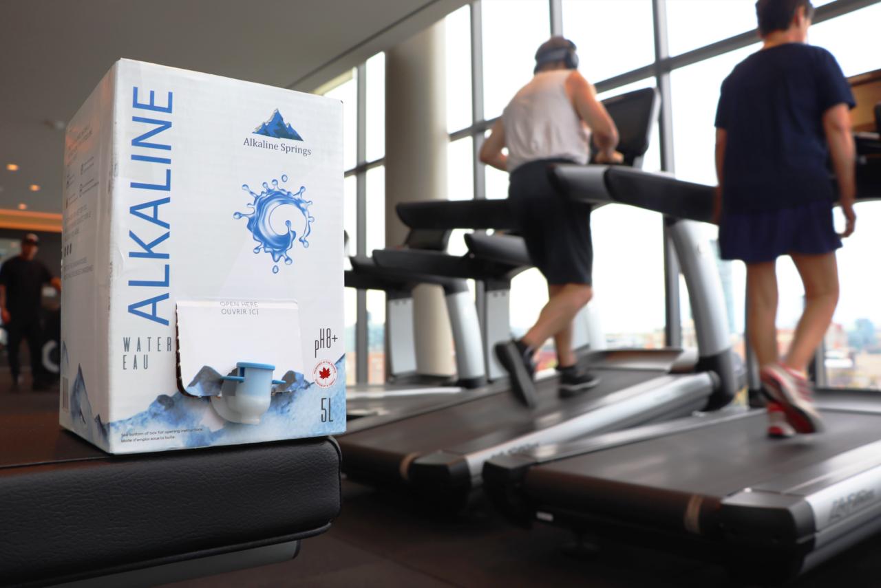 Alkaline Springs Bag-In-Box gym